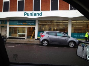 Punland by David Young