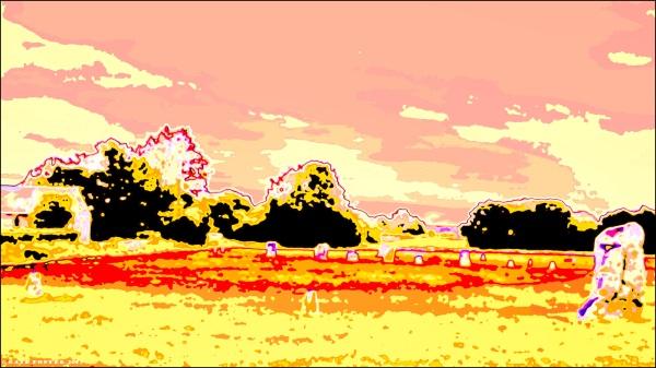 image4493 3-1